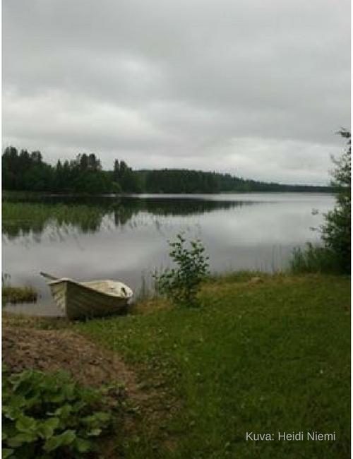 Aholanraitin-vuokramökit-Kortelahti-ranta